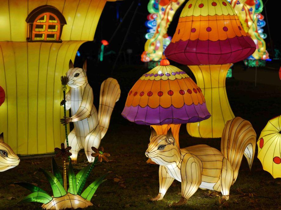 Festival Lanternes Gaillac 2017